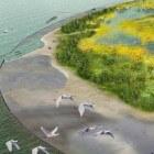 Marker Wadden – eilanden in de Markermeer