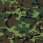 Camouflageverf met ziekmakend chroom-6