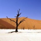 Ergste droogte Noord-Oost-Afrika 60 jaar - hongersnood 2011