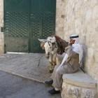 Geen demografisch gevaar voor Israël