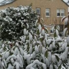 4, 5, 6, 7 januari 2016: grote temperatuurverschillen in NL